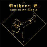 Anthony B - King In My Castle (Born Fire Music) 2xLP